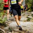 Biegaczu, przygotuj kolana na maraton